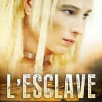 Les hommes libres T1 : L'esclave - Kate Aaron