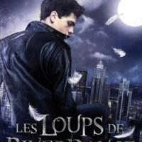 Les Loups de Riverdance T1 : Lucas - H.V. Gavriel