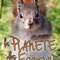 Neuf noisettes et demi T2 : La Planète des Écureuils - Kate Lowell